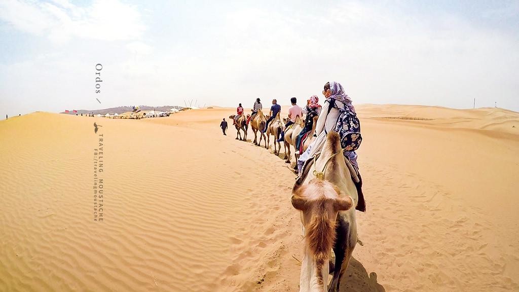 響沙灣_騎駱駝